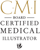 Board Certified Medical Illustrator Logo